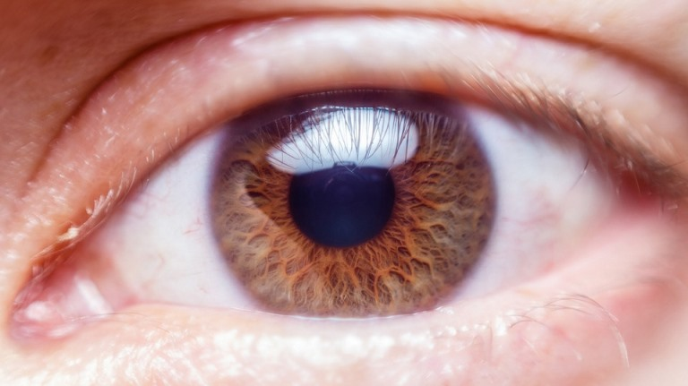 Photo of Artificial cornea transplant restores patient's vision