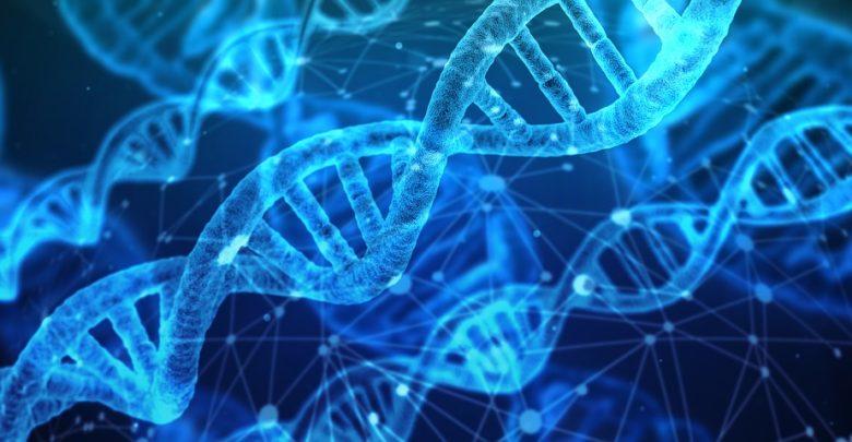 dna molecular testing