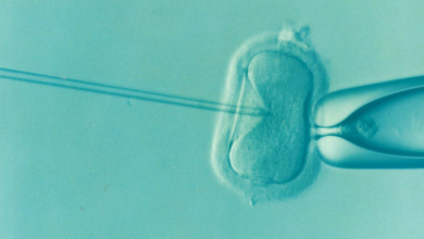Photo of Oasis Fertility Present FastTrack IVF Treatments