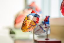 Photo of Rapid Cardiac MR Imaging Helps Detect and Manage Patient Heart Health for Cancer Treatment