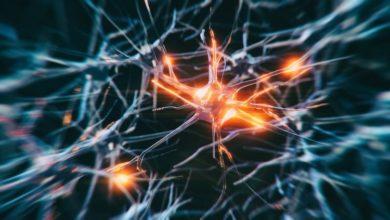 Photo of CDSCO gives nod to Insightec for neurosurgery platform, Exablate 4000