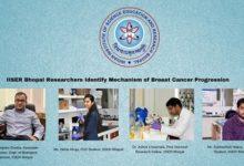 Photo of IISER Bhopal researchers identify breast cancer progression mechanism